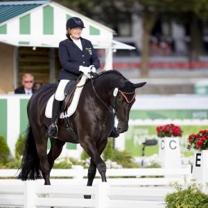 Ein Bild von einem Pferd: Elke Philipps Regaliz