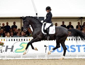 Weltmeisterschaften der jungen Dressurpferde 2020 wieder in Verden – UPDATE