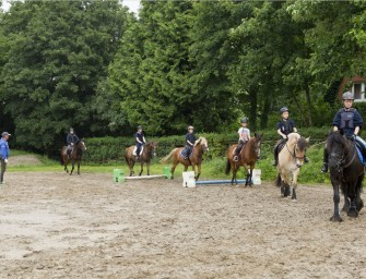 Pferdesteuer in Tangstedt abgelehnt – UPDATE