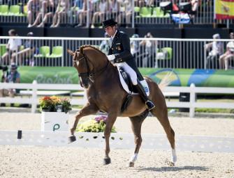 Dressurreiterin Jorst kauft mal wieder Pferd bei Helgstrand: Lopez' Lorenzo