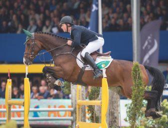 Springpferde-Weltmeister zu verkaufen