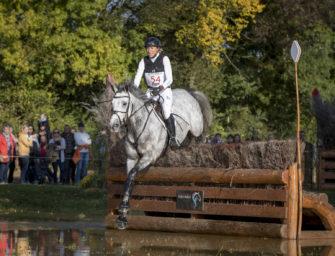 Le Lion d'Angers: Weiße Düne ist Weltmeisterin