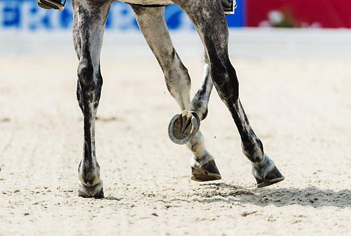 Beine - eine Studie von Jacques Toffi