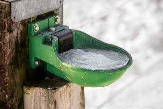 Bekannt Wenn Wasserleitungen einfrieren – frostfreie Pferdetränken - TG78