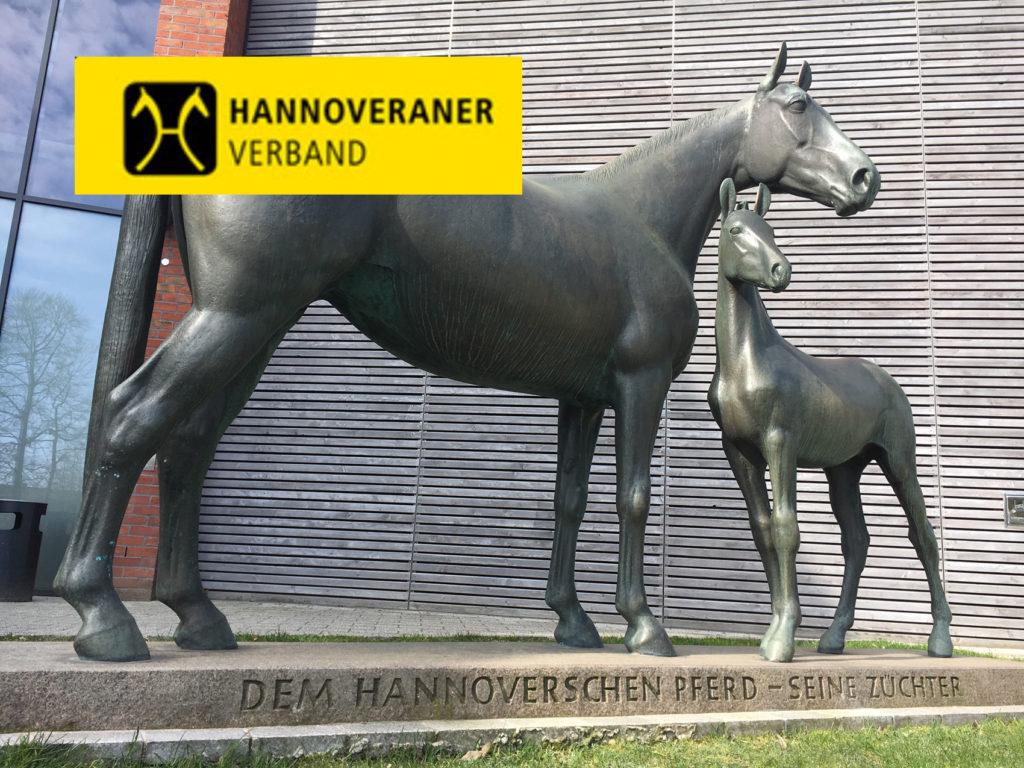 Verden: November-Auktion mit 55.000 Euro-Preisspitze v. Quantensprung - - St.GEORG